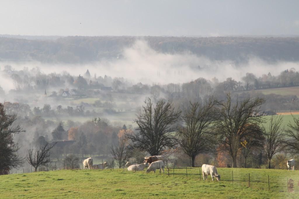 Le site naturel de Blangy le Château. Paysage brume matinale